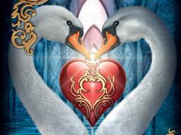 Webinar: 60 min. Kartenlegen zu Liebe & mehr, Einzelberatung