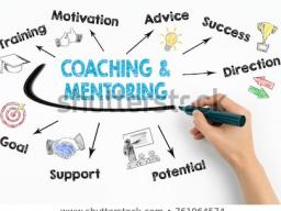 Webinar: MENTORIN / COACHING  für 6 Monate / 30 Sitzungen
