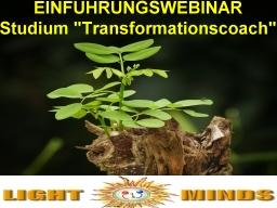Webinar: Studiengang Transformationscoach - Eine Einführung