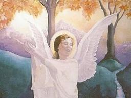 Webinar: Engel des Rückzugs