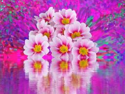 Webinar: Jahreskreisfest ♥ - Frühlingstagundnachtgleiche