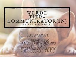 Webinar: Werde Tierkommunikator(in) AUSBILDUNG