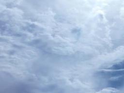 Webinar: Mondfinsternis  Transformation Neubeginn