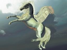 Webinar: Seelenritt auf dem weißen Pegasus - Lebenssinn