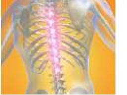 Webinar: Begradigungsenergie der Wirbelsäule - Begradigung - Ferneinweihung - Einzeltermin