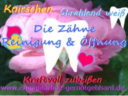 Webinar: OrganReinigung-Kiefer, KieferMuskeln, Zähne