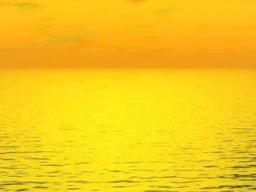 Webinar: Healing Medicine of Angels - Neuzeit-Energie - Ferneinweihung - Einzeltermin