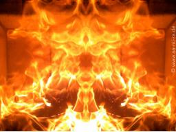 Webinar: 7 Tage = 7 Chakren / Die Reise des Elementes Feuer durch die Chakren befreit Dich von Altlasten & Begrenzungen