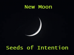 Webinar: New Moon - Seeds of Intention