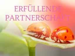 Webinar: ERFÜLLENDE PARTNERSCHAFT 1