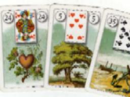 Webinar: Spirituelles,mediales Kartenlegen  -Einzelberatung-