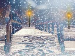 Webinar: Dein Monat Dezember
