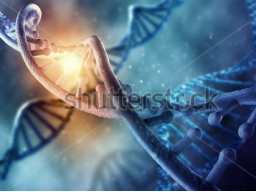 Webinar: DNA-Licht