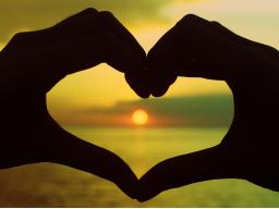 Webinar: Aus dem Herzen Leben