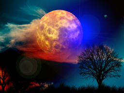 Webinar: Meditation zum Vollmond