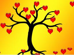 Webinar: Befreie und heile dein Herz