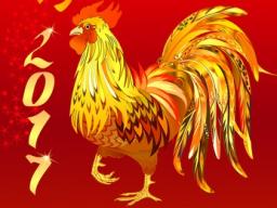Webinar: Feng Shui & Astrologie 2017 - Das Jahr des Hahns