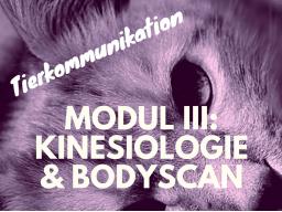 Webinar: Kinesiologie & Bodyscan - Tierkommunikation
