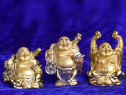 Webinar: Entdecke und nutze die Kraft der Seelenanordnung