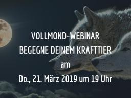 Webinar: BEGEGNE DEINEM KRAFTTIER - zum VOLLMOND