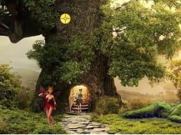 Webinar: Meditation*Lichtreise mit den Naturwesen*