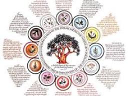 Webinar: Reise über das Medizinrad