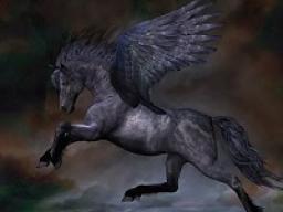 Webinar: Seelenritt auf dem schwarzen Pegasus - Blockadenlösung