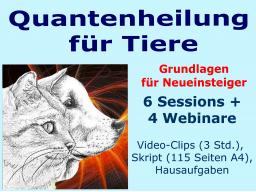 Webinar: Quantenheilung für Tiere - Grundlagen für NEUEINSTEIGER