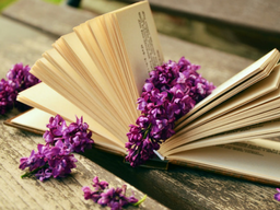 Webinar: Wie du ein offenes Buch wirst!