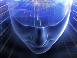 Webinar: Weisheits-Training: Eine Einführung in die Sieben Strahlen