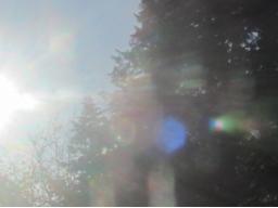 Webinar: Wiederkehr der Freude- Sonneneintritt in Schütze 2016
