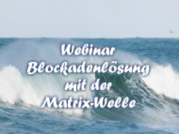 Webinar: Blockadenlösung mit der Matrix-Welle