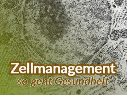 Webinar: Zellmanagement: Stärke Deine Zellen - stärke Deine Gesundheit