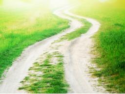 Webinar: Ganzheitliche Lebens- und Gesundheitsberatung + Co-Moderator