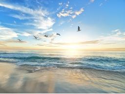 Webinar: Freiheit - VortexHealing® Energy Healing - 70 Min