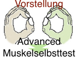 Webinar: VORSTELLUNG: Muskelselbsttest-Advanced