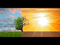 Webinar: SPEZIAL: Die 3 Gesetze der effektiven Selbstüberzeugung (mit geführter Meditation)