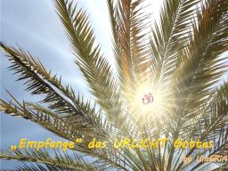 """Webinar: NEU  -Stufe II - Empfange das """"Urlicht Gottes"""" - Aktivierung des Kristallchakras für die Neue Zeit"""