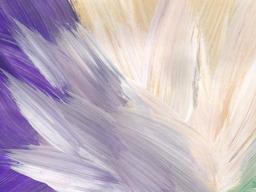Webinar: Aura- und Chakrenreinigung mit Engel Michael und Metatron