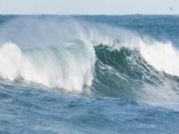 Webinar: Die Matrix-Welle bewegt - Ich lasse meine Süchte los!