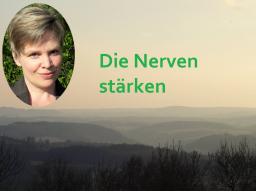 Webinar: NachtSchwärmer - Die Nerven stärken