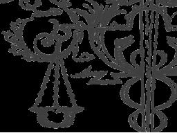 Webinar: Schicksalsgesetze - Der Inhalt sucht die Form