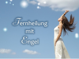 Webinar: Engel-Energiebild mit Beratung