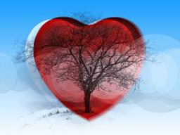 Webinar: SELBSTLIEBE ♡ die wichtigste Zutat für ein erfülltes Leben