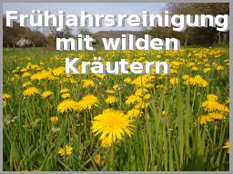 Webinar: Frühjahrsreinigung mit wilden Kräutern