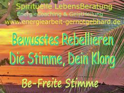 Webinar: Bewusstes Rebellieren - Die Stimme, Dein Klang ( musikfrei )