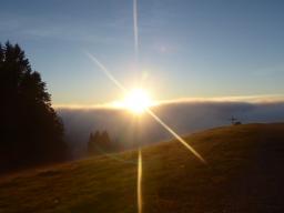 Webinar: Ein Lichtdom für uns und die Erde