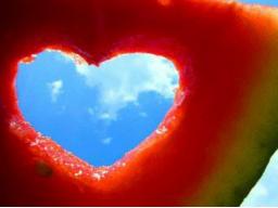 Webinar: Liebe 7: Das Ende
