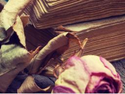 Webinar: Philosophieren über spirituelle Themen
