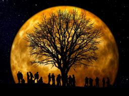 Webinar: Einweihung in die Göttlichkeit des Nanna 30 VIDO
